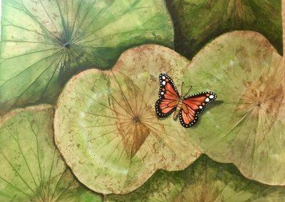 green-butterfly-japan